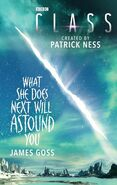 What She Does Next Will Astound You (novel)