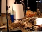 TARDIS Cam Behind-the-Scenes 4