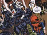 Apotheosis (comic story)