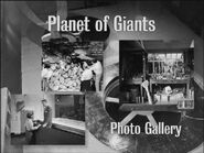Planet of Giants Photo Gallery