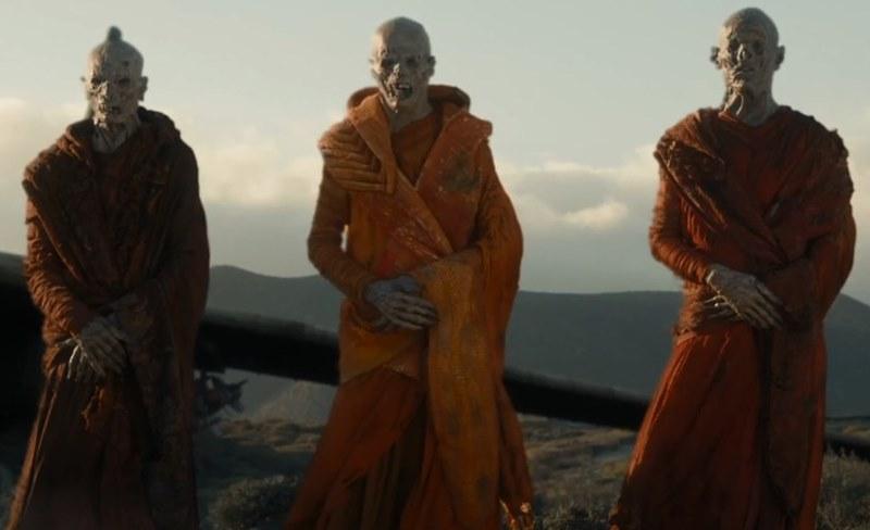 Monk (species)