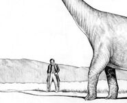 Dr Who and a Brachiosaurus