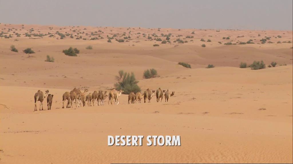 Desert Storm (CON episode)