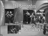 The Sensorites Photo Gallery