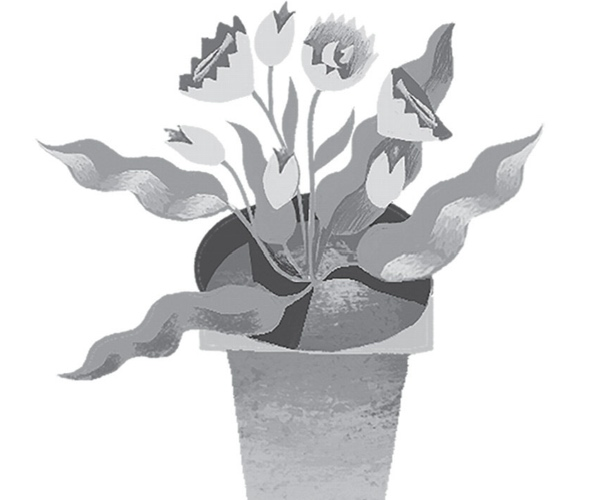 Begonia (The Secret in Vault 13)
