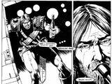 Star Tigers (comic story)