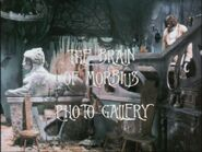 The Brain of Morbius Photo Gallery
