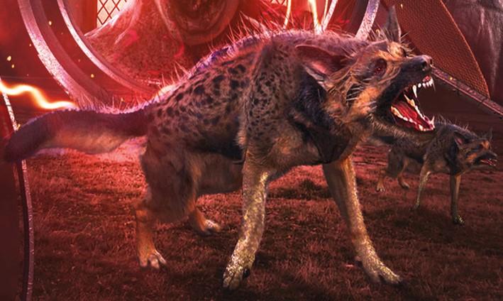 Morgrahound