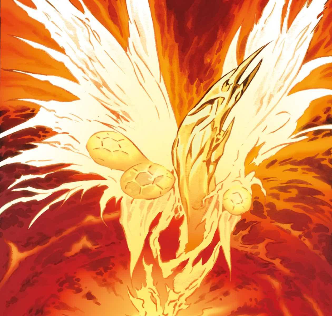 Phoenix (species)