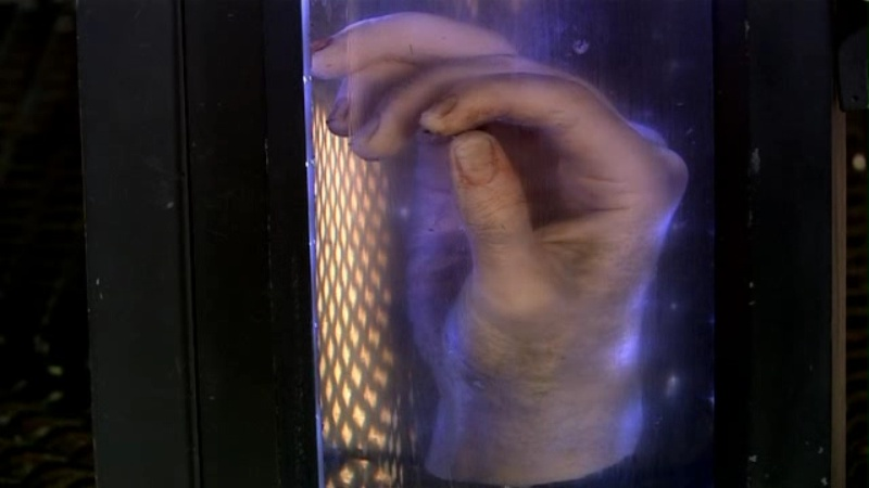 The Tenth Doctor's hand