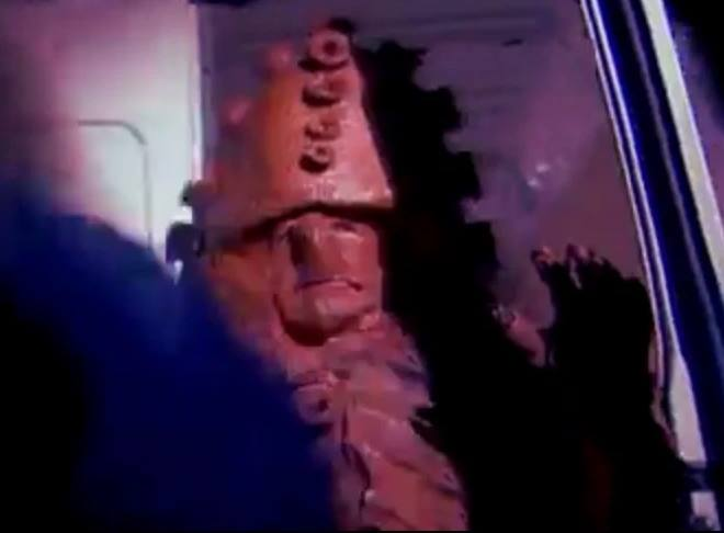 Zygon: When Being You Just Isn't Enough (home video)