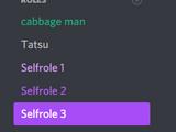Selfroles (Moderation)