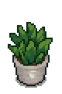 White Potted Fern