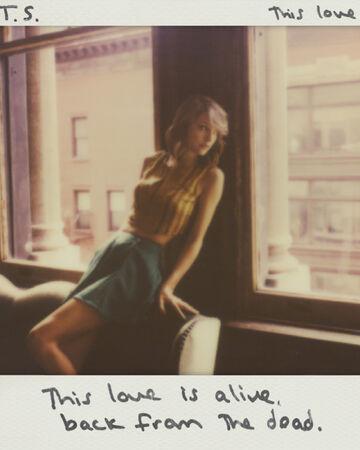 This Love Taylor Swift Wiki Fandom