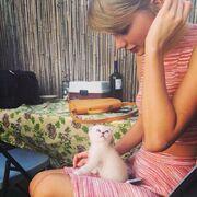 Olivia the cat.jpg