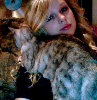 Pets Taylor Swift Wiki Fandom