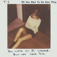 All You Had To Do Was Stay