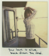 This Love2