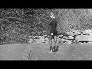 Taylor Swift - willow - dancing witch version (Elvira remix)