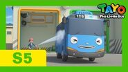 Tayo S5 Special Episode l When you have a bird friend l Tayo the Little Bus