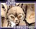 Clampaign sp5