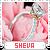 Sheva-spree s