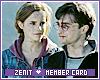 Zenit-Duet