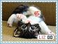 Liza-elements0