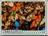 Infinity-butterflies