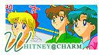 Whitney-charm