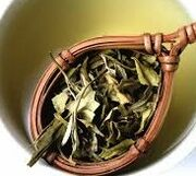 White tea leaves.jpeg