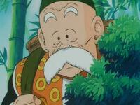 Grandpa Gohan.jpg