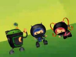 Ninja disguise