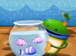 Bot saves the fish