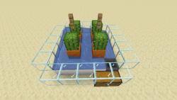 Kaktusfarm (Mechanik) Bild 1.1.png