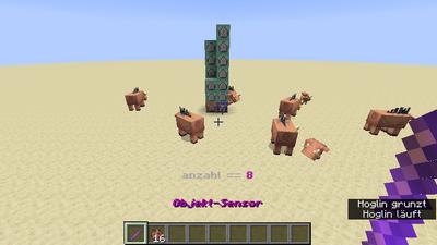 Objekt-Zähler (Befehle) Bild 1.2.png