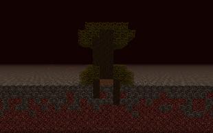 Dark Oak Tree Growing Through Bedrock
