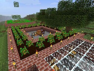 Forestry-main.jpg