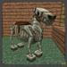 Skeleton Horse