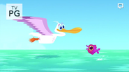 Pelican Flying Over Seas