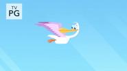 Pelican in Air