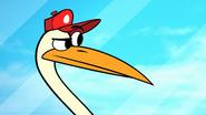 Hose-Water-Stork3