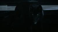 5x02 wolf