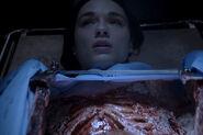 3x14 Allison hallucination