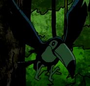 Beast Boy as Toucan