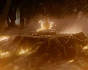 Teen Wolf Season 5 Episode 4 Condition Terminal Nemeton on fire