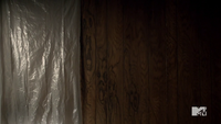 Teen Wolf Season 2 Episode 6 Motel California Faces in the wood paneling