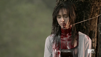 Teen Wolf Season 3 Episode 3 Fireflies 3rd Virgin Homicide