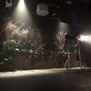 Teen Wolf Season 5 Behind the Scenes fake trees at Teen Wolf HQ 042115