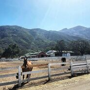 Teen Wolf Season 5 Behind the Scenes Thousand Oaks ranch location 090115